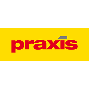Praxis300.png